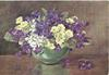 no front title, green bowl of violet, yellow & white violets