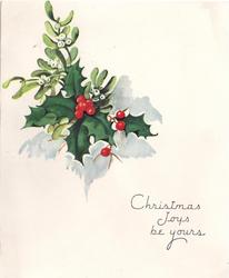 CHRISTMAS JOYS BE YOURS sprig of holly & mistletoe centre/left