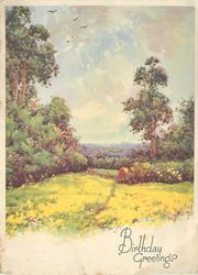 BIRTHDAY GREETINGS grassy meadow front, shrubs & trees mid-distance, low skyline