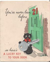 YOU'VE NEVER BEEN 21 BEFORE SO HERE'S A LUCKY KEY TO YOUR DOOR cat holding extremely large key