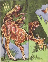 HI! giraffe leans right with 3 monkeys on its back
