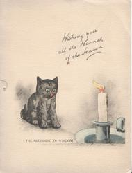 WISHING YOU ALL THE WARMTH OF THE SEASON kitten sits by candle THE BEGINNING 0F WISDOM