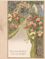 YOUR DAYS BE BRIGHT YOUR LIFE BE HAPPY many coloured roses on either side of path leading up to cottage