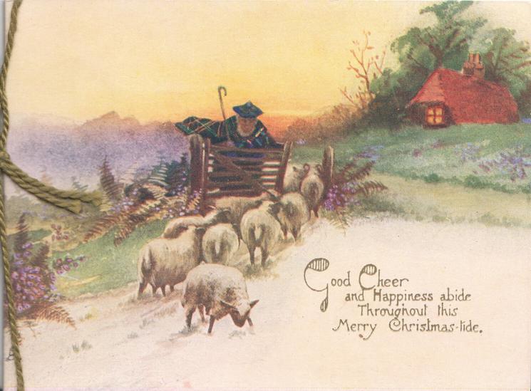 GOOD CHEER below evening rural scene, shepherd leans on gate beside 9 sheep