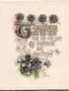 TO WISH YOU ..verse bunches of violets above & below