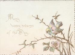 MANY HAPPY RETURNS OF THE DAY bluebird perched on wild rose
