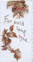 FOR AULD LANG SYNE between bronzed blackberry leaves
