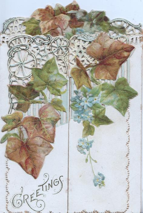 GREETINGS below ivy & spray of blue forget-me-nots hanging down on left & right panels