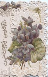 GOOD WISHES in gilt left, violets right on smaller perforated flap