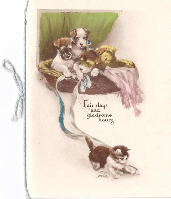 FAIR DAYS AND GLADSOME HOURS 4 puppies in basket above kitten playing with ribbon
