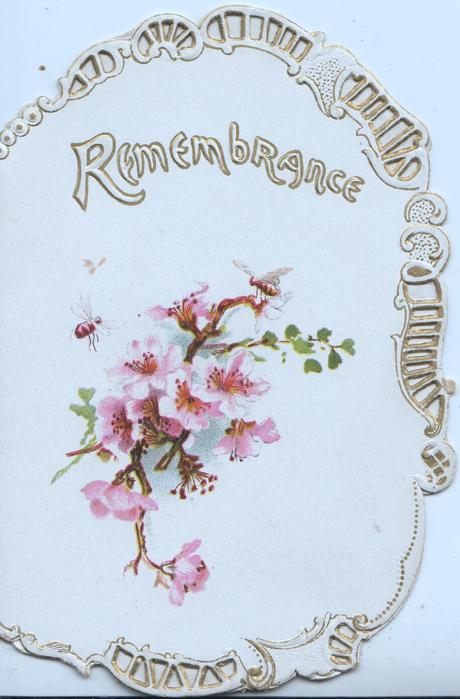 REMEMBRANCE in white & gilt above pink cherry blossom , perforated marginal design