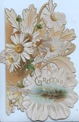 GREETINGS in gilt  below white daisies & above rural vignette , perforated