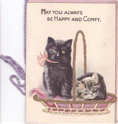 MAY YOU ALWAYS BE HAPPY AND COMFY 2 cats in basket with handle, one sits, one crouches