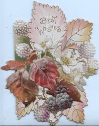 BEST WISHES in gilt on top blackberry leaf above flower & berries