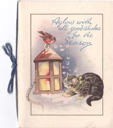 AGLOW WITH ALL GOOD WISHES FOR THE SEASON cat crouches below robin perched atop lantern
