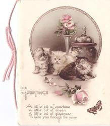 GREETINGS with verse, 3 fluffy kittens play with butterfly, 2 roses front, vase & lidded pot with imp against circular inset