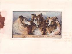 FAITHFUL FRIENDS AND TRUE on collar below inset of 3 scotch collies