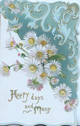 HAPPY DAYS AND MANY (H & M illuminated) below white daisies with yellow centres, green/blue design above