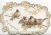 REMEMBRANCE in gilt below left 4 perched chaffinches, marginal branch/floral design