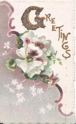 GREETINGS(G illuminated & glittered) white & purple pansies top right, brown background left, purple ribbon