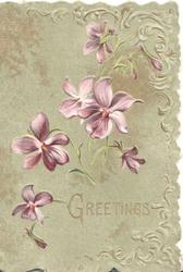 GREETINGS in gilt below violets on green card with embossed design right