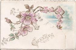 GREETING in gilt below purple wild roses,  watery rural inset on right flap