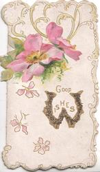 GOOD WISHES(W illuminated) below 2 pink roses & yellow design