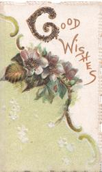 GOOD WISHES (G illuminated & glittered) in gilt above purple anemones, green background left & below