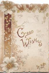 GOOD WISHES in gilt to right of wild roses, ginkgo leaves around, brown design left