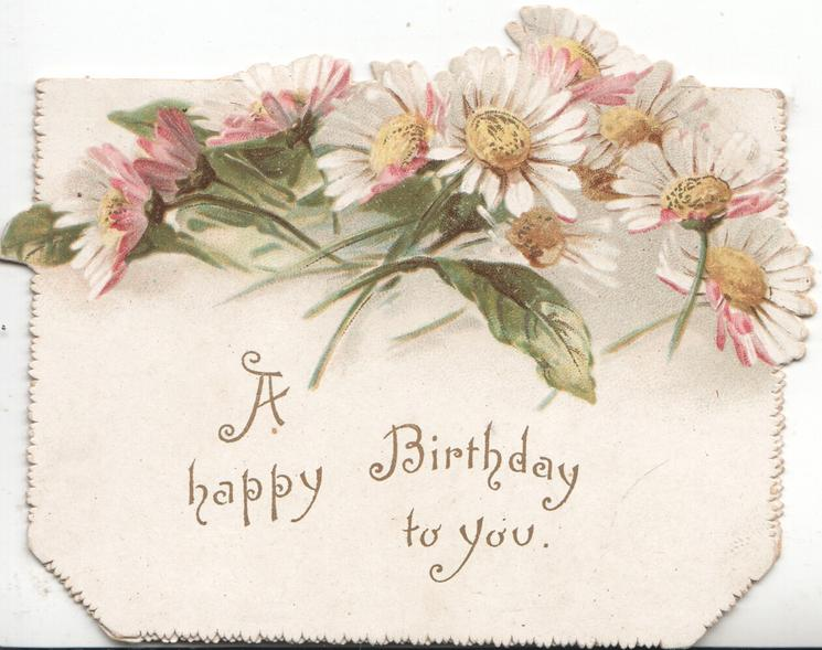 A HAPPY BIRTHDAY TO YOU below pale pink daisies