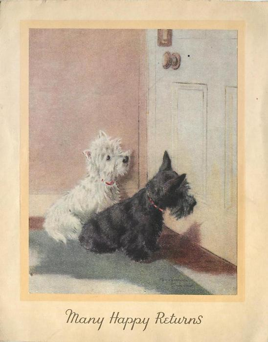 MANY HAPPY RETURNS 2 terriers, one black & one white sit looking at closed door