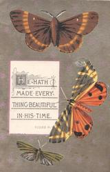 HE HATH MADE EVERYTHING BEAUTIFUL IN HIS TIME, ECCLES.III.1on white plaque, 3 butterflies
