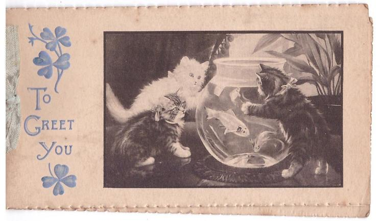 TO GREET YOU opt. in blue with clover, grey/black inset with 3 kittens & fish bowl
