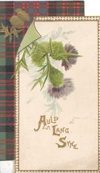AULD LANG SYNE in gilt below purple thistles on white panel, tartan & thistle design upper left