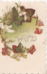 BEST WISHES surrounded by ivy leaves in green & autumn colour