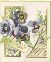 GREETINGS in gilt  on green plaque below left below purple/yellow pansies on left flap