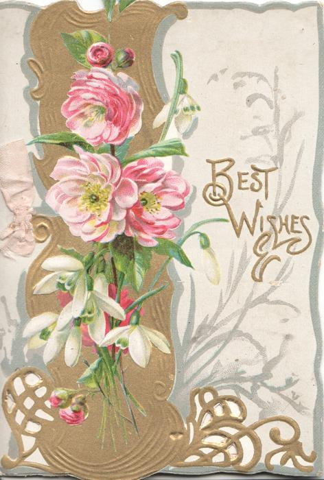 BEST WISHES In gilt plaque right, pink peonies above snowdrops over gilt vertical design