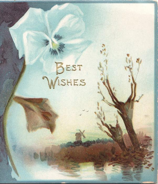 BEST WISHES  in gilt below blue pansy & over rural watery inset,  trees & windmill