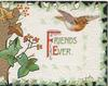 FRIENDS EVER(F & E illuminated) on white central plaque, English robin flies, marginal ivy design