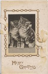 MERRY GREETINGS in gilt,  inset in gilt chain, two cats snuggle together