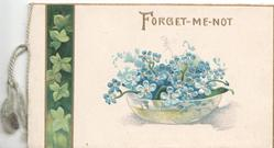 FORGET ME NOT in gilt over white bowl of forget-me-nots , vertical band of ivy leaves left