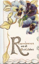 REMEMBRANCE(R illuminated & gliterred) in gilt below purple/white pansies
