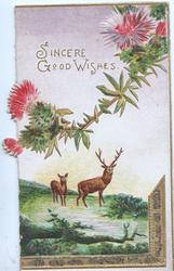 SINCERE GOOD WISHES in gilt above stag & hind below purple thistle heads
