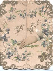 BEST WISHES In gilt across  2 flaps, violets scattered over pink background, hand comes in from right