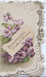 REMEMBRANCE AND BEST WISHES in gilt on white plaque in fronrt of violets. white marginal designs
