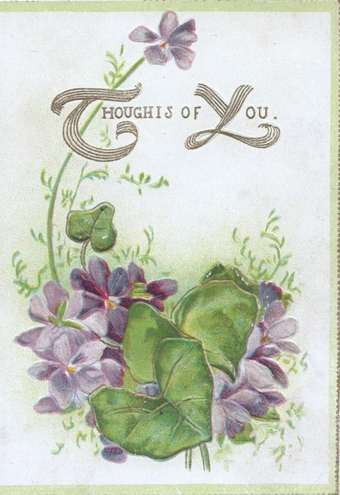 THOUGHTS OF YOU(T & Y illuminated) in gilt, above violets