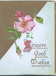 SINCERE GOOD WISHES(illuminated),  pink wild rose & 2 buds over triangular gilt design upper left