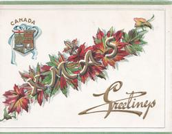 XMAS GREETINGS(illuminated) in gilt  over autumnal maple leaves below CANADA & coat of arms left