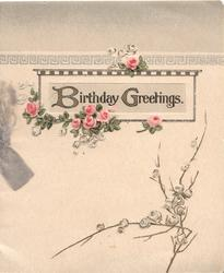 BIRTHDAY GREETINGS(B & G illuminated) on plaque above pink & white roses
