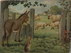 farmyard scenes (no title given), possibly missing front cover